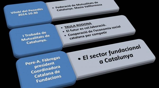 PONÈNCIA. El sector fundacional a Catalunya